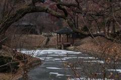 Changdeokgung Palace, Huwon