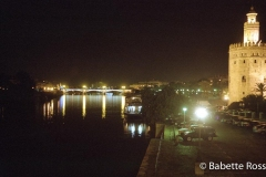 Rio Guadalquivir & Toro de Oro Guadalquivir