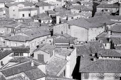 Rooftops 1998-11-16