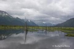 Alaskan Railraod, Glacier Discovery