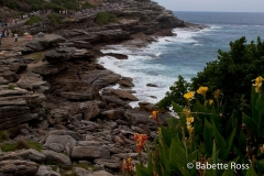 Cliff Walk - Bondi to Tamarama - Sculpture by The Sea