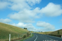 between Dunedin & TeAnu