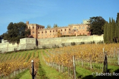 Castello De Brolio 1998-11-18