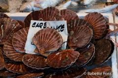Rialto Market, Shellfish