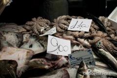 Rialto Market, Squid
