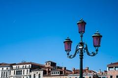 Pink Lights, Blue Skies